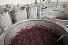 Czerwoni winegrapes w otwartych fermenters Zdjęcia Stock