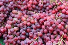 Czerwoni winogrona Zdjęcia Stock