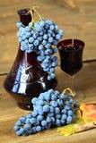 Czerwoni winogrona Fotografia Royalty Free