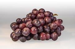 Czerwoni winogrona odizolowywający na białym szkle Fotografia Stock