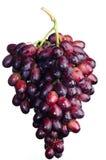 Czerwoni winogrona odizolowywający. Zdjęcie Royalty Free