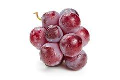 Czerwoni winogrona w wodnych kroplach Zdjęcie Royalty Free