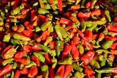 czerwoni zieleni gorący pieprze Obrazy Stock