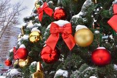 Czerwony łęk na drzewie w śniegu fotografia royalty free