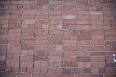 Czerwony ściana z cegieł zdjęcie royalty free