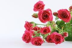Czerwony ślubny róża bukieta bielu tło fotografia stock