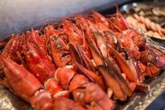 Czerwony świeży homara krab Fotografia Royalty Free