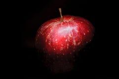 Czerwony świeży jabłko na czerni Obraz Stock