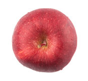 Czerwony Apple II Obraz Royalty Free