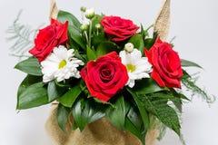 czerwony białe kwiaty Zdjęcia Stock