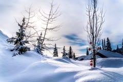 Czerwony Bożenarodzeniowy dekoraci obwieszenie na gałąź drzewo w głębokiej śnieg paczce obraz stock