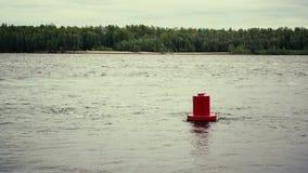 Czerwony boja Na wodzie zbiory