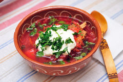Czerwony borscht Fotografia Stock