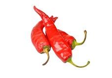 Czerwony Cayenne chili pieprz fotografia stock