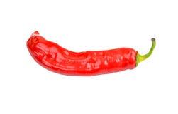 Czerwony Cayenne chili pieprz zdjęcia stock