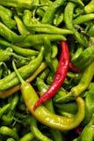 Czerwony chłodny pieprz i zieleni pieprze zdjęcie stock