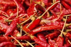 Czerwony chili dwa Obrazy Stock