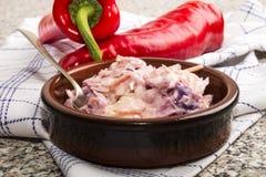Czerwony chili i bzu cebuli coleslaw Obraz Royalty Free