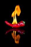 Czerwony chili na czerni powierzchni z płomieniami obraz royalty free