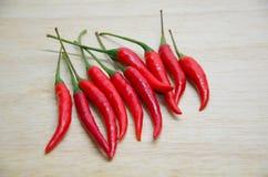 Czerwony chili na drewnianej desce Obrazy Stock