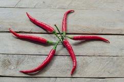 Czerwony chili na drewnianym tle Obraz Stock