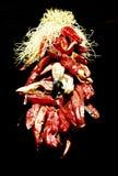 Czerwony chili pieprze Zdjęcia Royalty Free