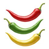 Czerwony chili pieprze royalty ilustracja