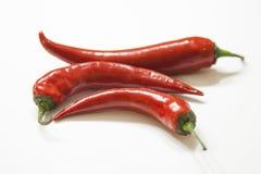 Czerwony chili pieprze Fotografia Stock