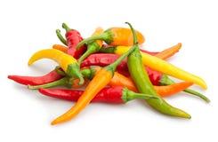 Czerwony chili pieprze Fotografia Royalty Free