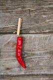 Czerwony chili pieprzu obwieszenie na arkanie Zdjęcie Stock