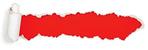 Czerwony chodnikowiec w poszarpanej papierowej dziurze Zdjęcie Stock