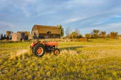 Czerwony ciągnik na trawie zielony pole blisko starego a i budy, Zdjęcie Stock