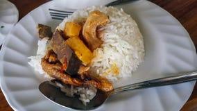 Czerwony curry na ryż Obrazy Stock