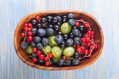 Czerwony czarnego rodzynku czarnej jagody agrest w drewnianym pucharze Zdjęcia Royalty Free