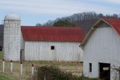 czerwony dach Fotografia Stock
