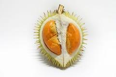Czerwony Durian Obraz Royalty Free
