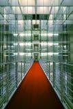 czerwony dywanowa Obraz Stock