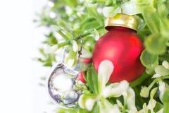 Czerwony dzwon na plastikowej roślinie Obrazy Royalty Free