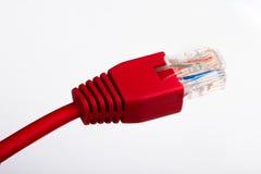 Czerwony etherneta kabel Zdjęcie Stock