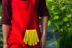 czerwony fartuch i żółta rękawiczki ogrodniczka obrazy stock