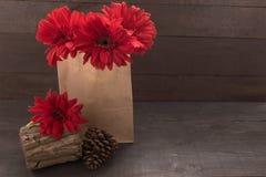 Czerwony gerbera kwitnie i sosnowi rożki są w torbie na drewnianym, Obrazy Stock
