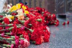 Czerwony goździk kwitnie przy pomników spadać żołnierzami w drugiej wojnie światowej obrazy royalty free