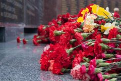 Czerwony goździk kwitnie przy pomników spadać żołnierzami w drugiej wojnie światowej zdjęcie stock