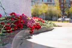 Czerwony go?dzik kwitnie przy pomnik?w spada? ?o?nierzami w drugiej wojnie ?wiatowej obrazy royalty free