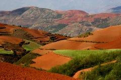 czerwony gruntów Obrazy Stock