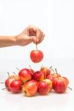 Czerwony jabłczany podnosi up rękę Zdjęcie Royalty Free