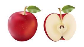 Czerwony jabłko i połówka odizolowywaliśmy wektorową ilustrację w nowożytnym realistycznym stylu Zdjęcie Royalty Free