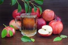 Czerwony jabłko i sok lub zdjęcie stock