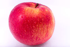 Czerwony jabłko w kroplach woda na białym zakończeniu zdjęcia royalty free