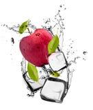 Lodowa owoc Obrazy Stock